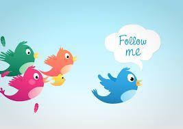 follow y nofollow
